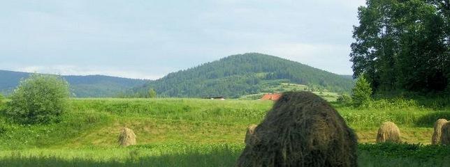 Agroturystyka, Gospodarstwo Agroturystyczne