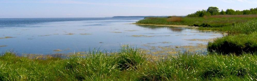 Nad Zatokę Pucką z Władysławowa