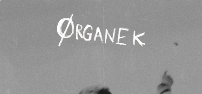 Ørganek - koncert