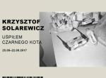 Krzysztof Solarewicz - Uśpiłem czarnego kota / preTIFF