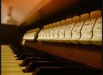 Organy+- koncert organowy