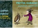 Przytul Karalucha - warsztaty przyrodnicze