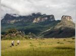 """Spotkanie: Wyprawa do wenezuelskich """"zaginionych światów"""""""