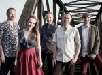 Szulerzy - Blues and Roll - koncert