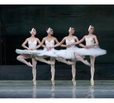 """Spektakl baletowy """"Jezioro Łabędzie"""""""