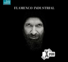 X Project - Flamenco Industrial - koncert