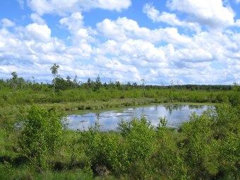 Karwia i Nadmorski Park Krajobrazowy