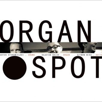 Organ Spot - koncert