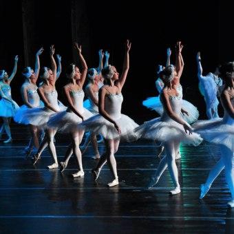 Royal Russian Ballet - Jezioro łabędzie