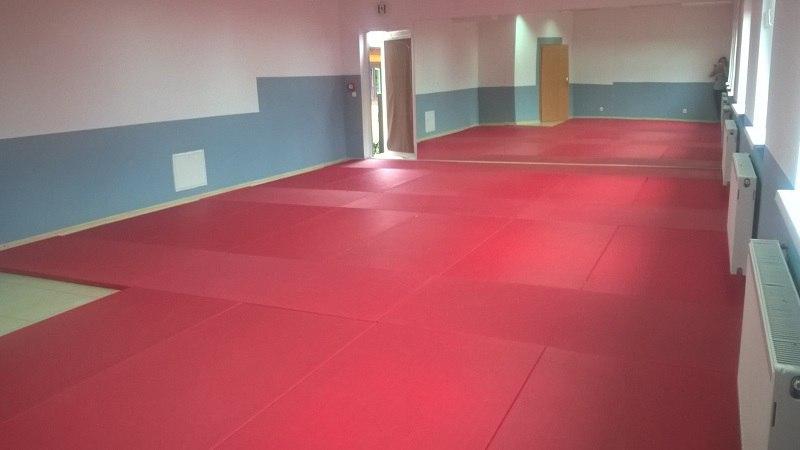 mata judo