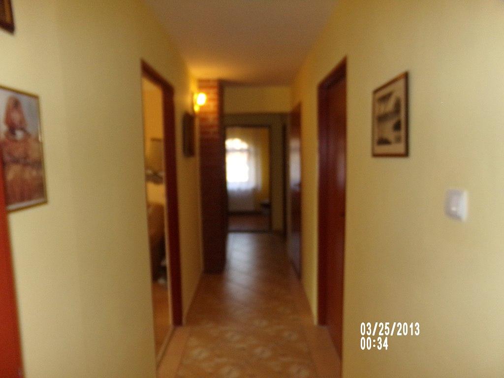 korytarzyk na pietrze