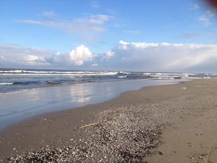 szeroka , dzika plaża