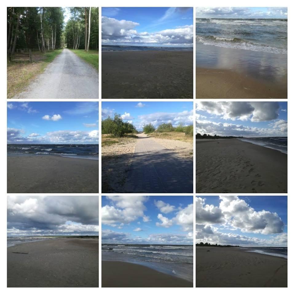 krajobraz plażowy
