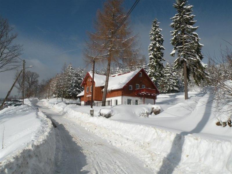 Śnieżynka