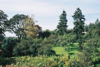 Stary Ogród - Kwatery agroturystyczne