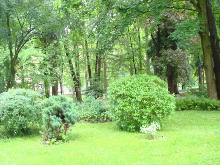 Widok na Park Zdrojowy - Spa Park view
