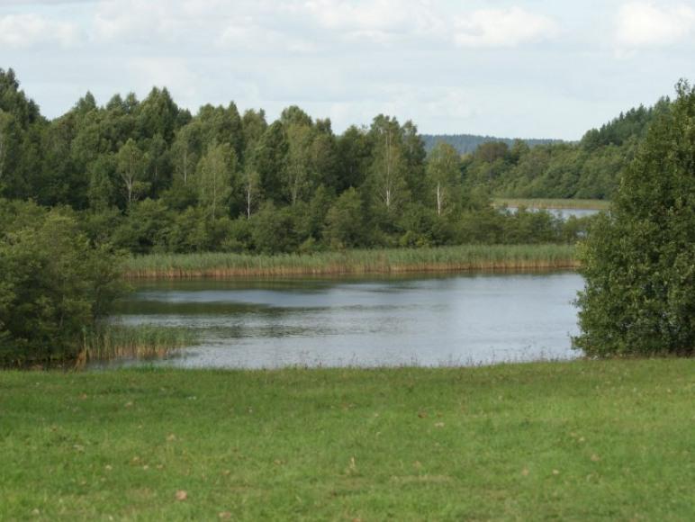 Widok ze skarpy na jezioro