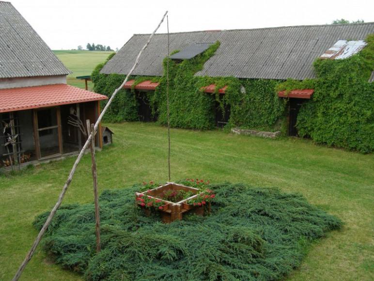 widok z tarasu na podwórze