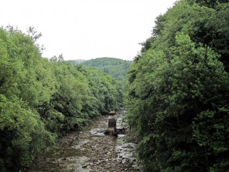 Rezerwat Przełom Jasiołki