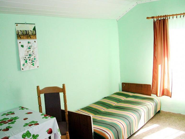 Zielona Przystań