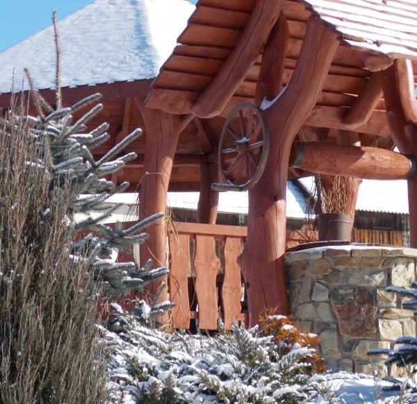 Całoroczne domki z kominkiem - wiata z grillem i studnia