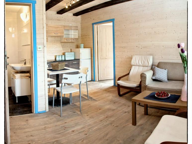 Apartament Niebieski - Salon