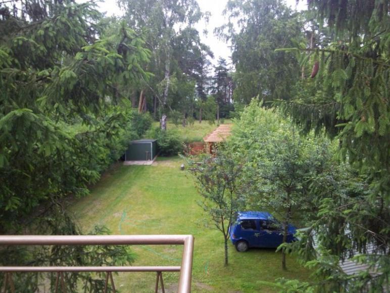 Widok na ogród z tarasu