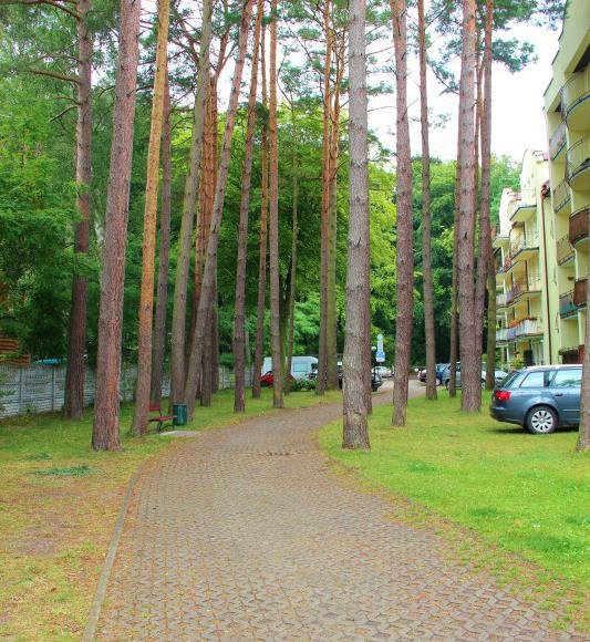 Apartament Gryf Morskie Oko