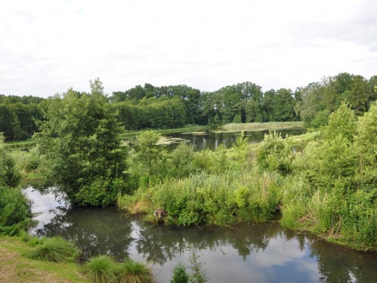 Pokoje nad rzeką Sanną w Potoczku