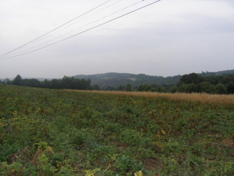 Agroturystyka Gajówka