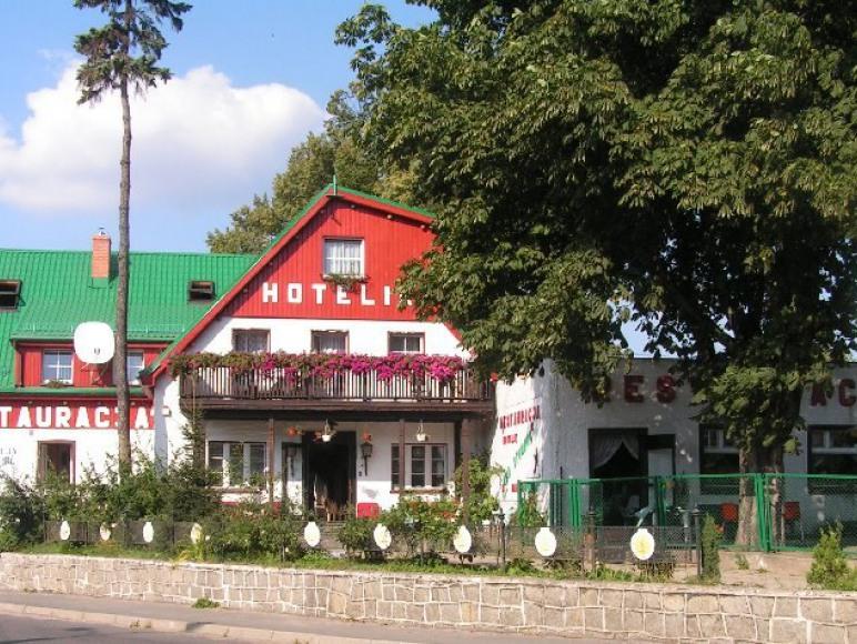 """Hotelik Restauracja""""Nad Stawami"""""""