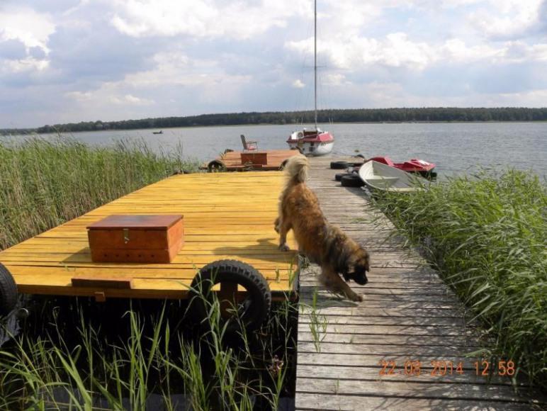 pomost, tratwy jacht kabinowy rowerek wodny i łódka wiosłowa