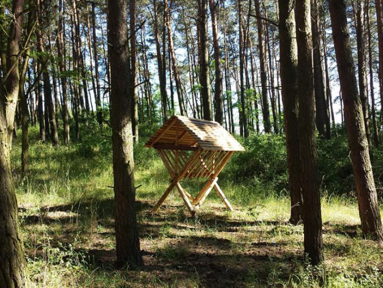 Brzozowy Park Imprezy Integracje Wypoczynek
