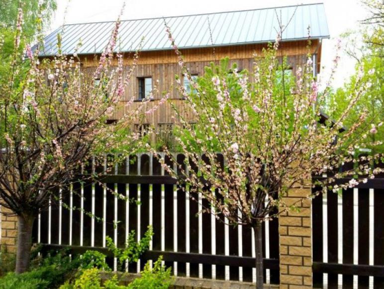 Dom Gościnny 51D