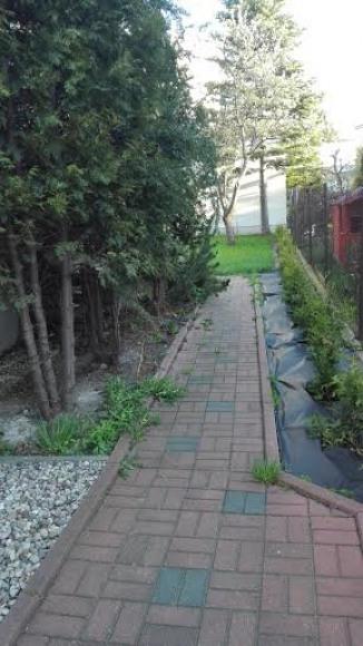 wejście do ogrodu