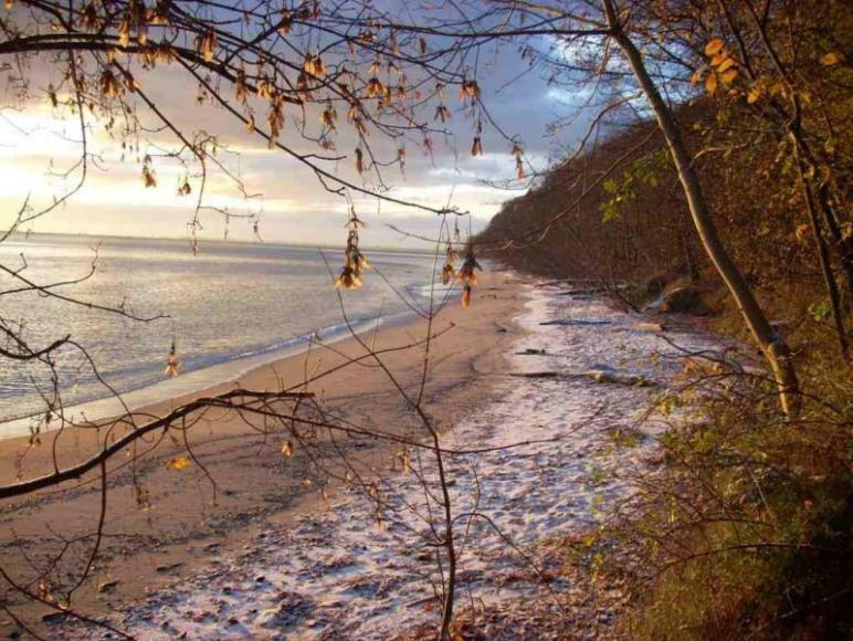 najbliższa plaża w Redłowie