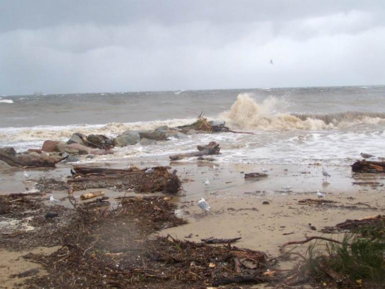 dzika plaża po sztormie