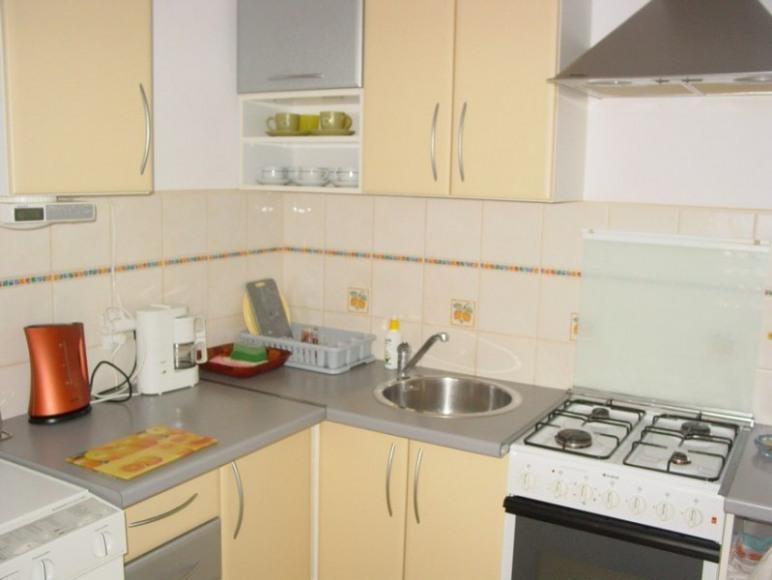 Apartament Iwa kuchnia Gd-Jelitkowo