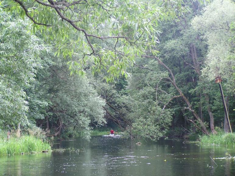 Rzeka Krutynia w Ukcie