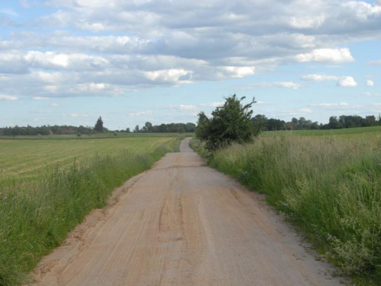 Droga do Kadzidłowa (Park Dzikich Zwierząt)