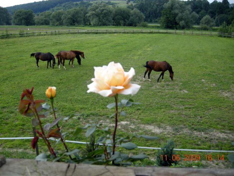 Agroturystyka - spływy kajakowe