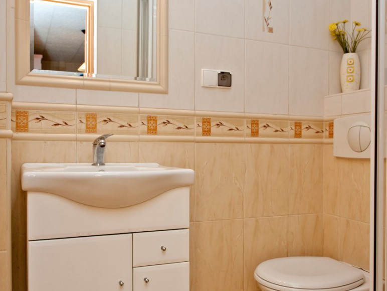 Dom łazienka