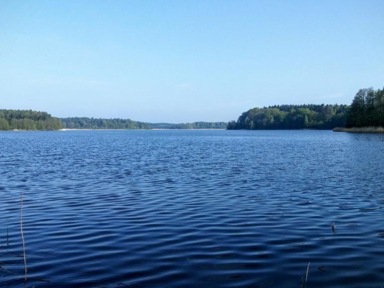 Jezioro Gatno