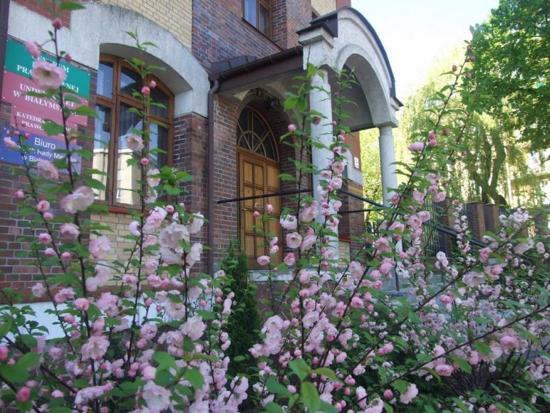 Wejście do budynku wiosną