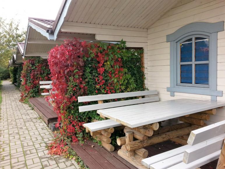 nasze domki jesienią