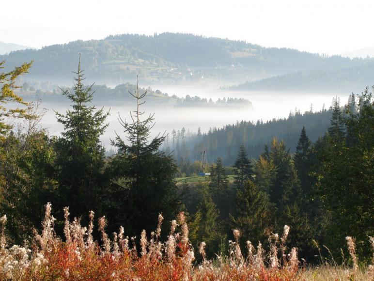 widok w kierunku rezerwatu Butorze