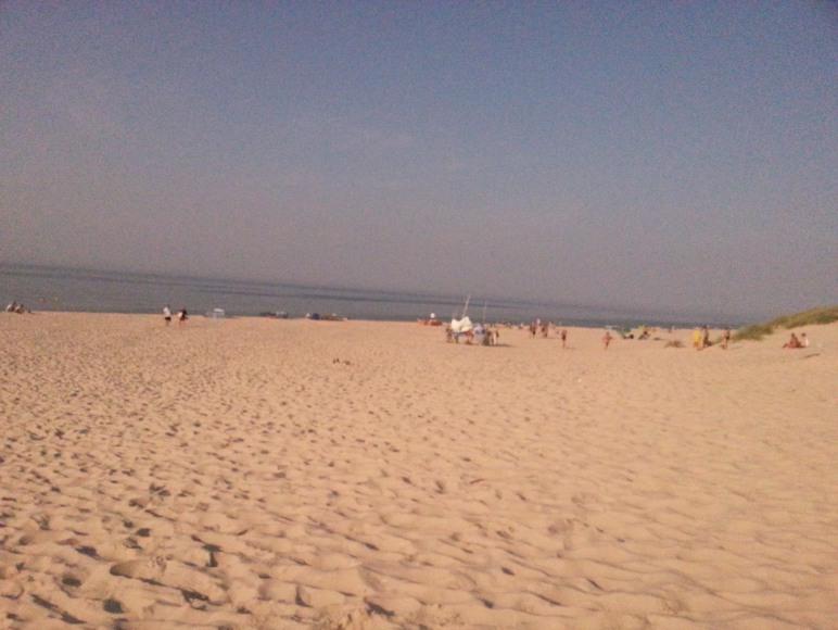 Plaża w SłowińskimParku