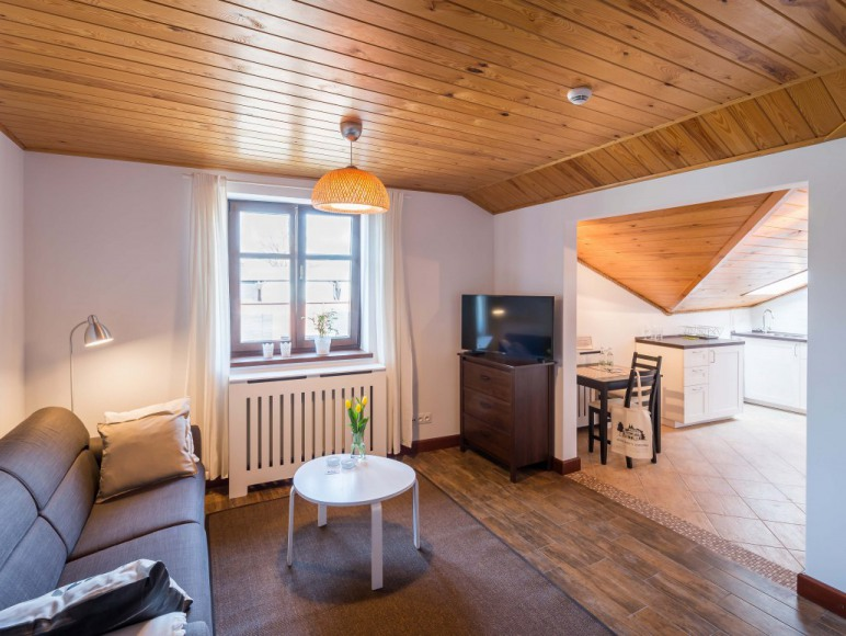 Salon z rozkładaną sofą - mieszkanie 2 osobowe