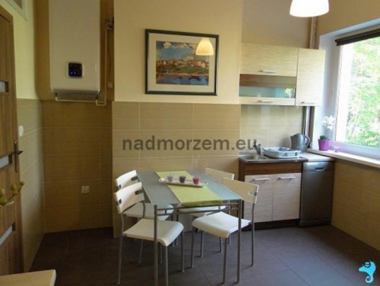 Kuchnia w apartamencie