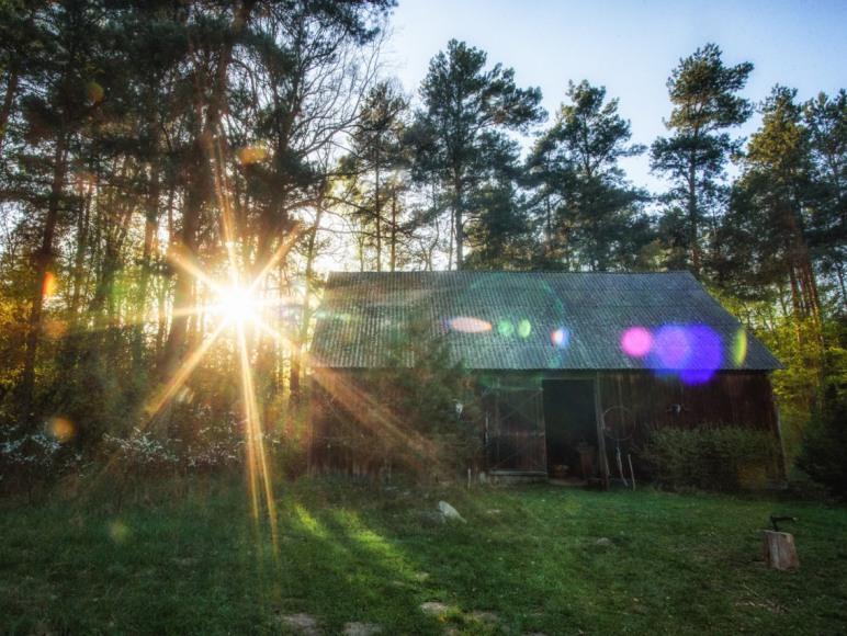 Leśniczówka - podwórko